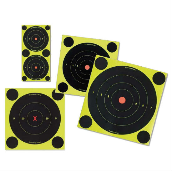 Birchwood Casey Shoot n C targets