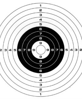 Gamo Card Air Rifle Targets x100 14cm