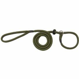 Bisley Basic Dog Slip Lead - Green